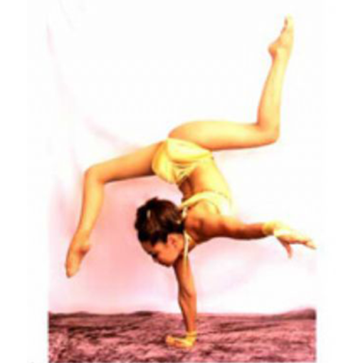 contortionist-chimge
