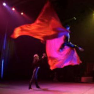 duo-aerial-silk-act