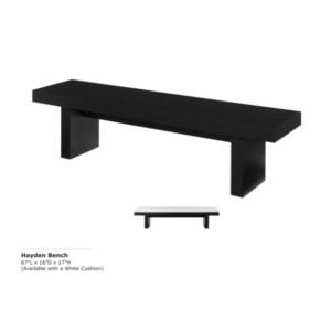 hayden-bench-1