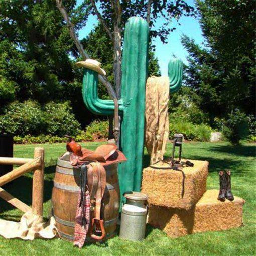 Cactus Outdoor Scene