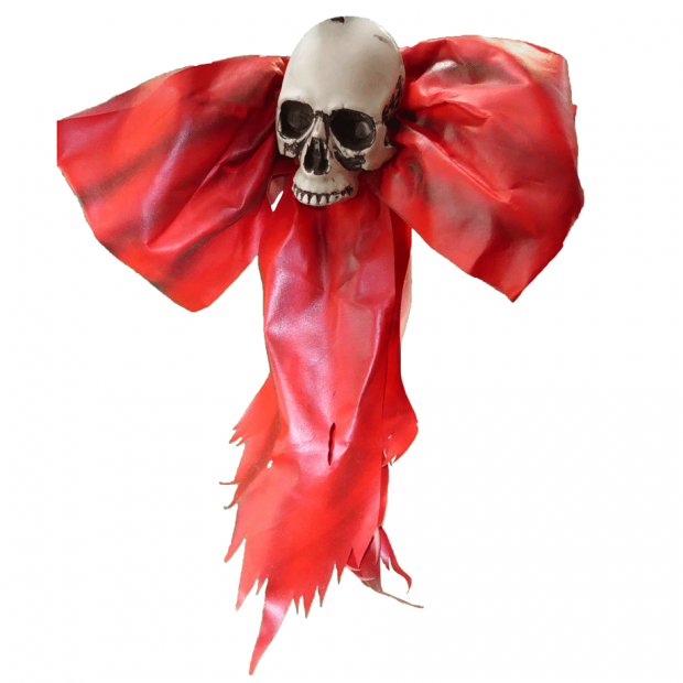 Skull on Red Bow