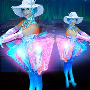 LED Cupcake Twins