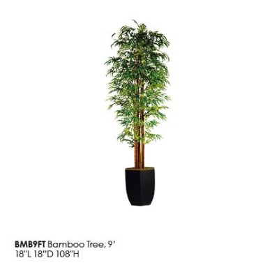 BMM9FT_Bamboo_Tree